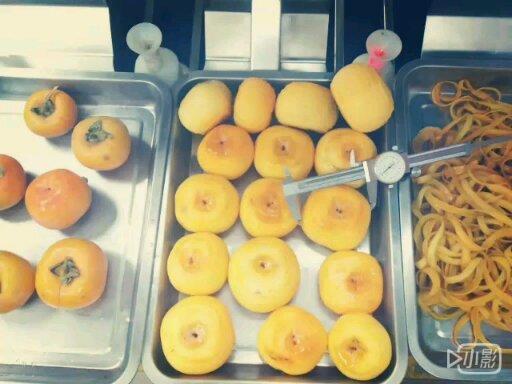 达桥供应柿子削皮机  柿子去皮机 柿饼加工设备