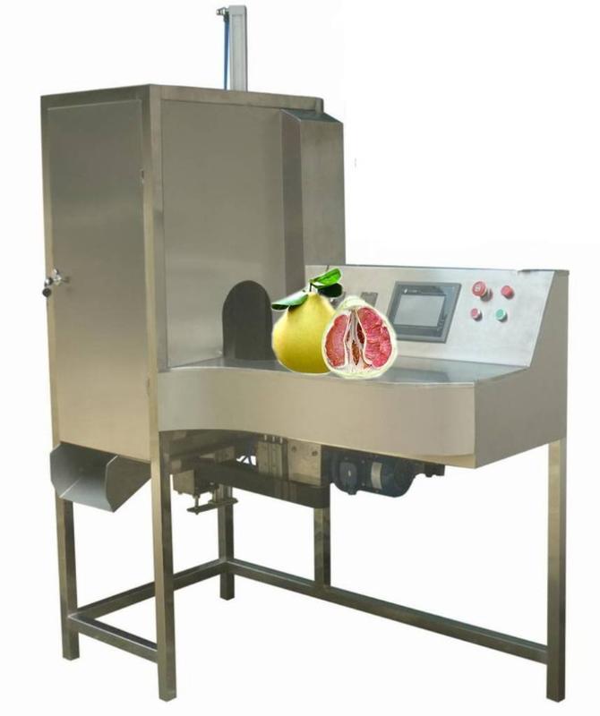 达桥供应蜜柚削皮机  蜜柚去皮机 蜜柚加工设备