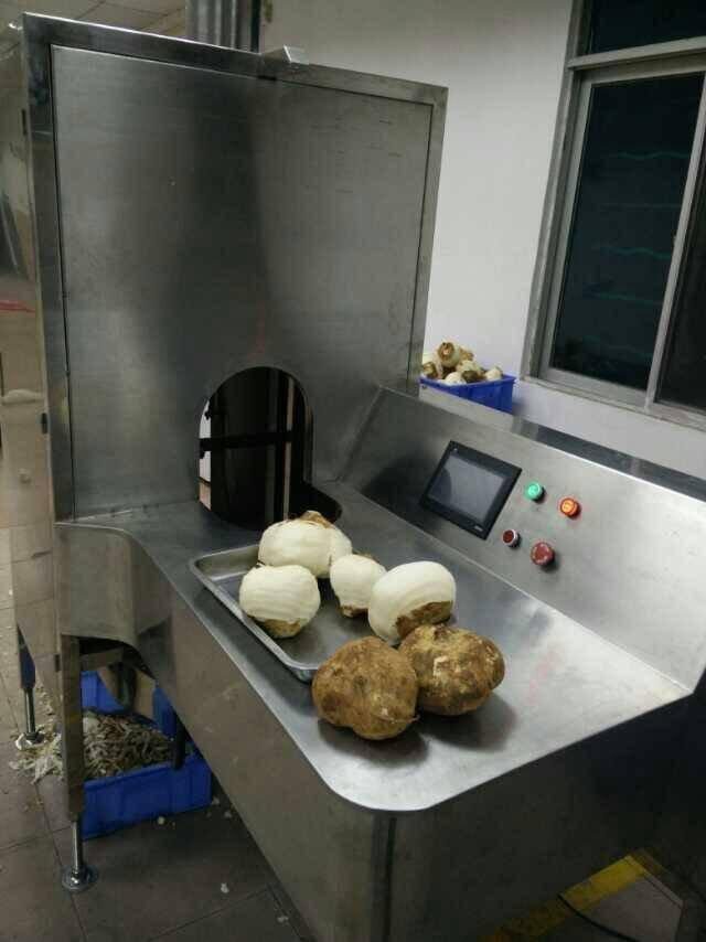 达桥供应沙葛削皮机 土瓜去皮机 沙葛加工设备