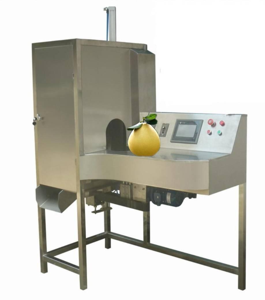 达桥供应四季柚削皮机  柚子去皮机  柚子加工设备