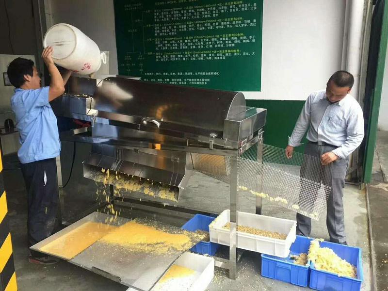 厂家供应果粒柑子  柑子籽肉分离机