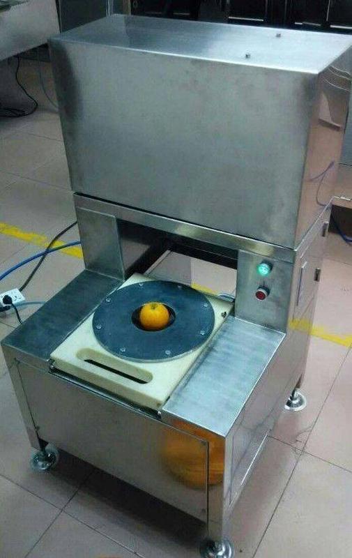 厂家供应橙子切瓣机 橙子加工设备