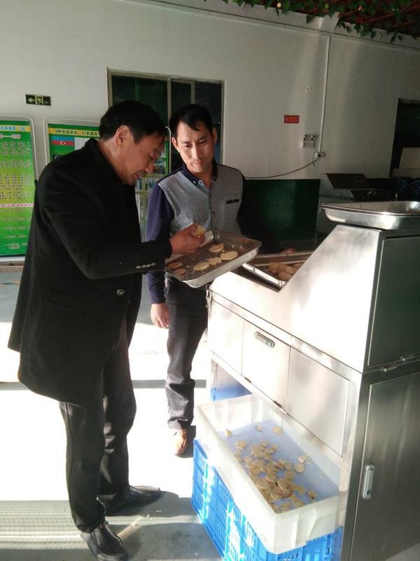 厂家供应高速工业型竹笋切片机,竹笋加工设备
