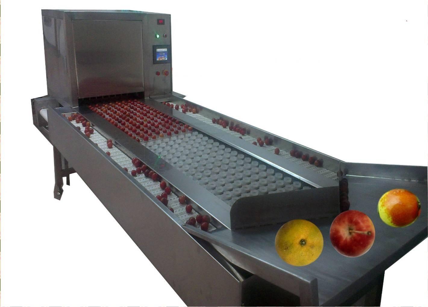 厂家供应全自动沙果捅核-切瓣机,沙果干加工设备
