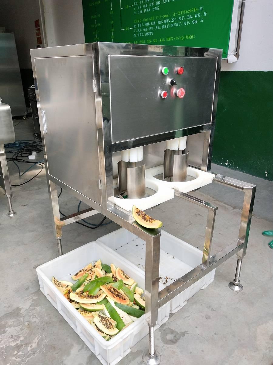 厂家供应木瓜切瓣机,木瓜粉,木瓜饮料加工设备